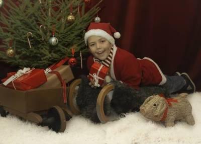 Foto från Julstämning på Dahlbogården