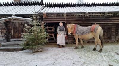 Foto från Julmarknad på Rots Skans