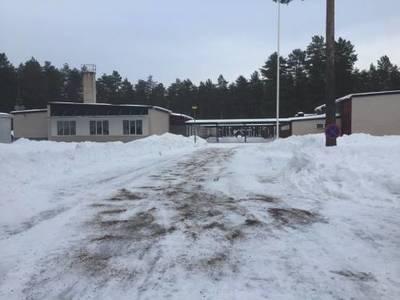 Foto från Julmarknad i Bergsängs Skola