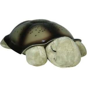 Sköldpadda natthimmel