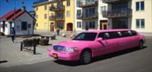 Åk limousin
