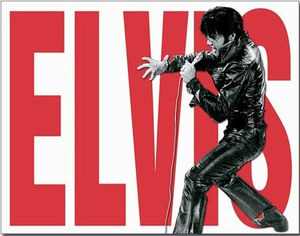 Elvis Presley Leather - Retro Skylt