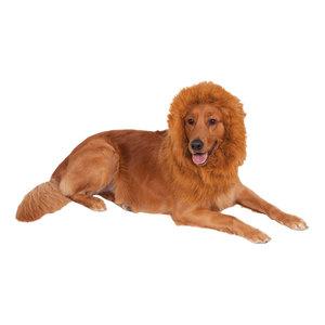 lejonman peruk hund