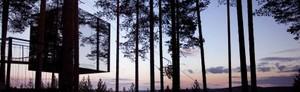 The Mirrorcube - Treehotel för Två