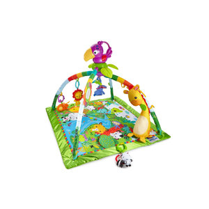 Fisher Prices baby gym